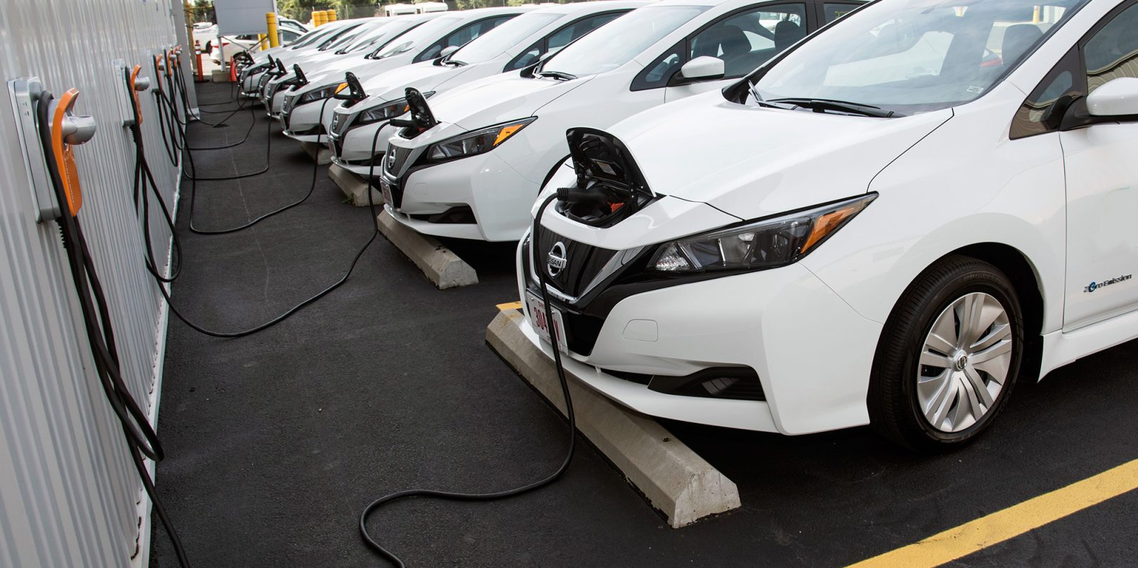 Want to buy the electric cars at affordable price