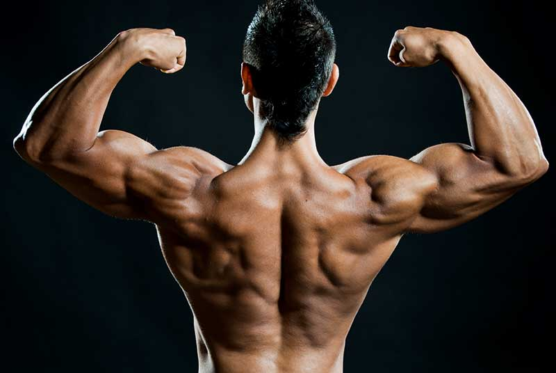 How to build your muscles through some habits?